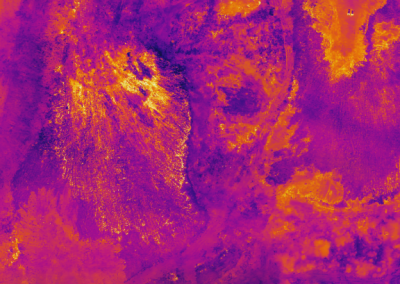 Infrared Thermal Mapping